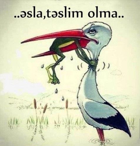Məcburiyyətə Təslim Olmayaq, Məcburiyyətin Gücündən Faydalanaq